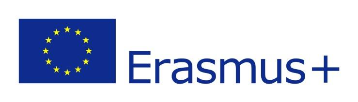 Erasmus+ Logo Sweep