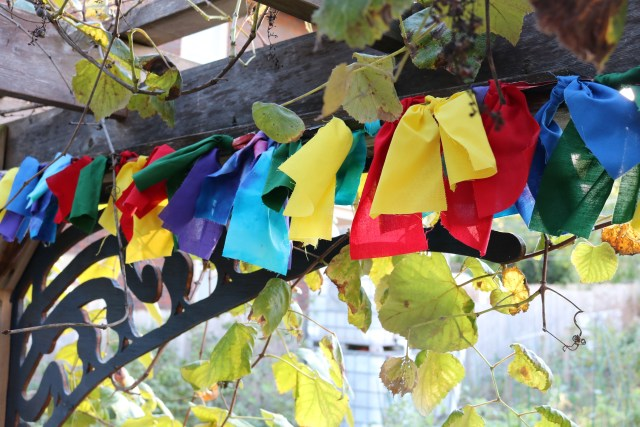 a garland for the grape pergola at 4th Street Farms