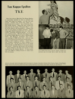 1952 Terrapin