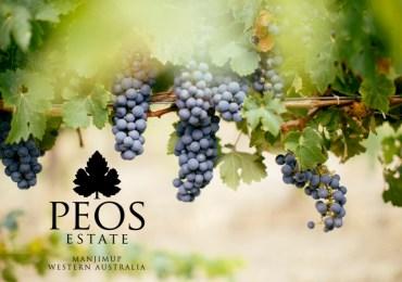 UMD Australia and Peos Estate Winery Announce Partnership