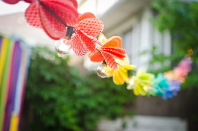 um-doce-dia-arco-iris-e-delicadas-borboletas-11