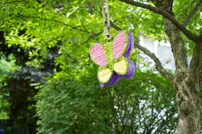 um-doce-dia-arco-iris-e-delicadas-borboletas-13