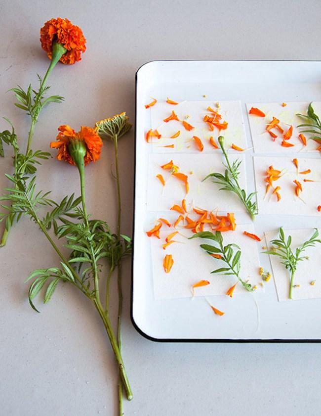 um-doce-dia-aquarelando-com-flores-02