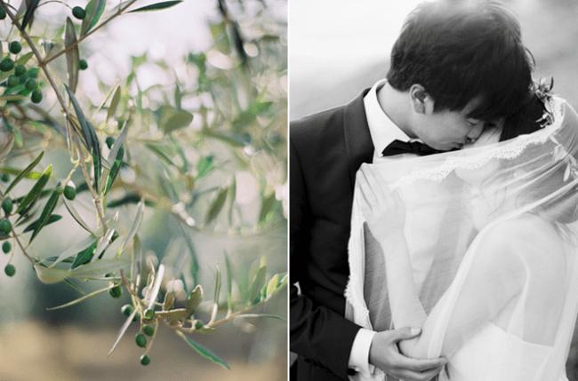 um-doce-dia-casamento-nas-colinas-da-nova-zelandia-24