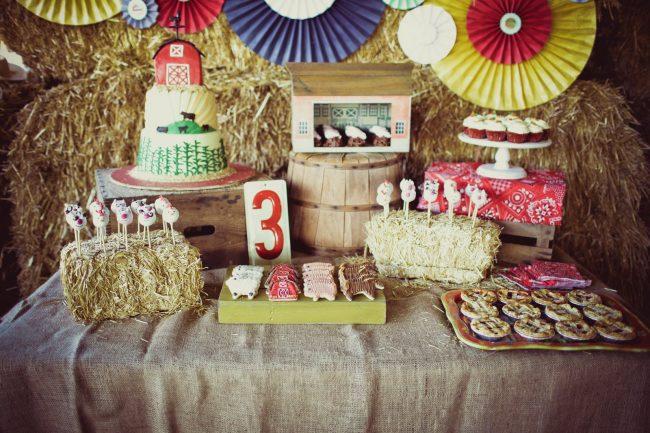 um-doce-dia-festa-de-aniversario-brincando-de-ser-fazendeiro-01