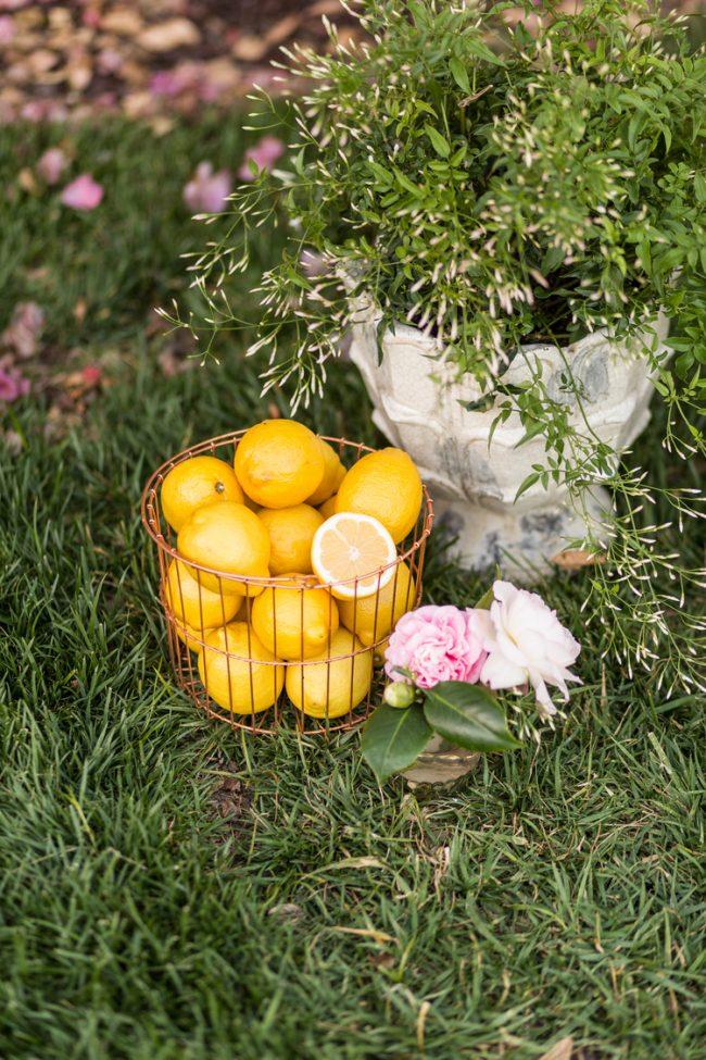 um-doce-dia-casamento-inspiracao-limoes-primavera-doce-11