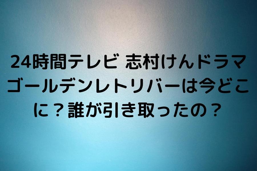 24時間テレビ 志村けんドラマ ゴールデンレトリバーは今どこに?誰が引き取ったの?