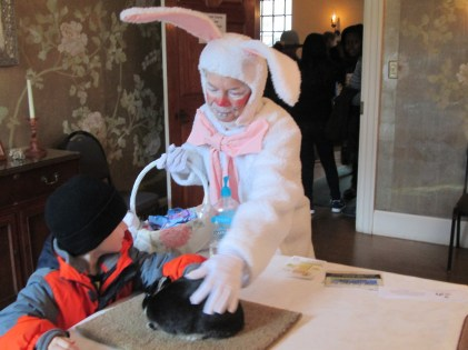 The 4-H Rabbit Club visiting places at spring events