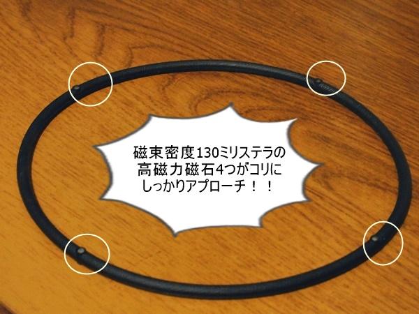 RAKUWA磁気チタンネックレスS