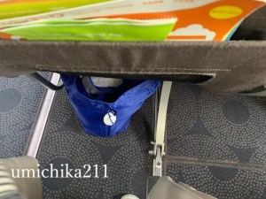 "<img src=""carry on luggage with baby.jpg"" alt=""機内持ち込み手荷物""/>"