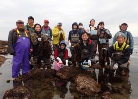 漁師体験 海藻収穫をしよう! 2016年3月27日