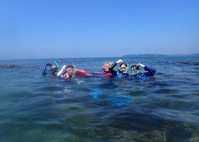 沖ノ島スノーケリング体験のお客さまの声 2016年度