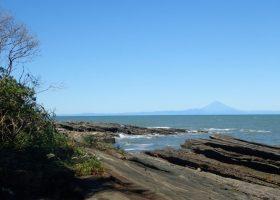 台風19号の影響 沖ノ島の様子とアマモ保護ゾーンの補修