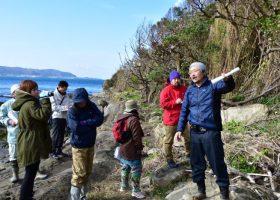 沖ノ島の再生活動の実践に向けて 1/10に森の現状調査