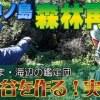 館山・沖ノ島の森林再生 山と谷を作る!実践編 宇賀明神と倒れた御神木と生命をつなぐ樹