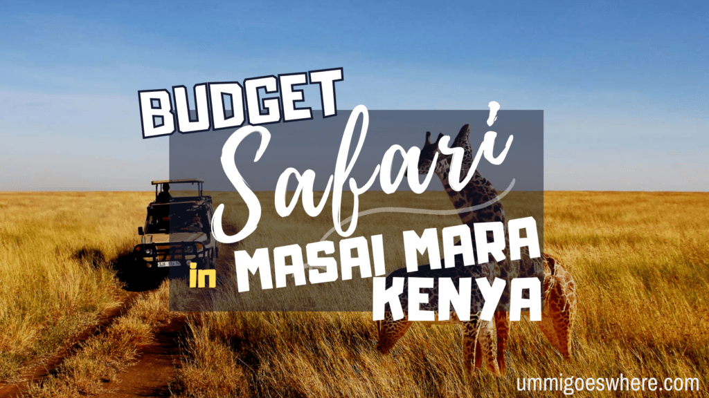 Budget Safari in Masai Mara, Kenya | Ummi Goes Where?