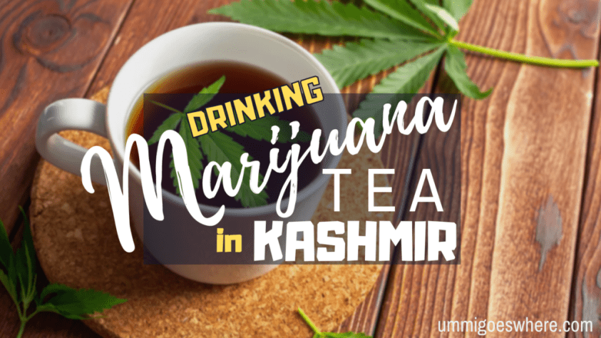 Drinking Marijuana Tea in Kashmir | Ummi Goes Where?