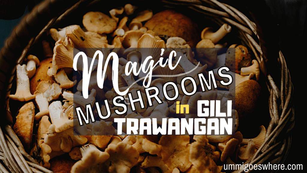 A Beginner's Guide to Magic Mushrooms in Gili Trawangan | Ummi Goes Where?