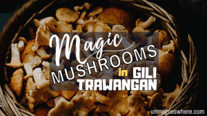 A Beginner's Guide to Magic Mushrooms in Gili Trawangan | Ummi Goes Where?