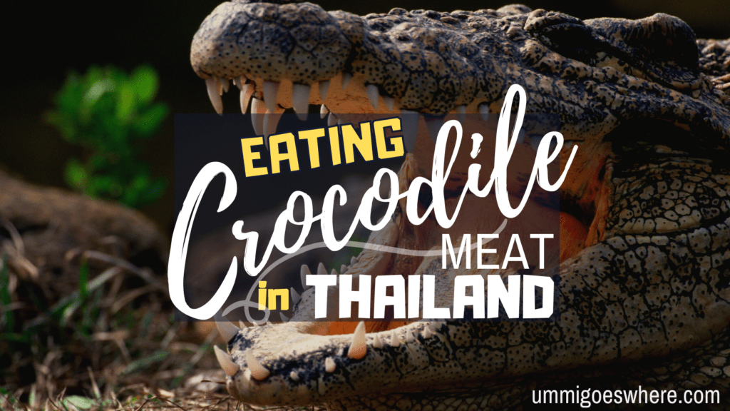 Eating Crocodile Meat in Thailand | Ummi Goes Where?
