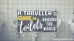 A Traveler's Guide to Toilets Around the World