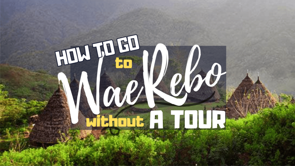 How to Go to Wae Rebo without A Tour | Ummi Goes Where?