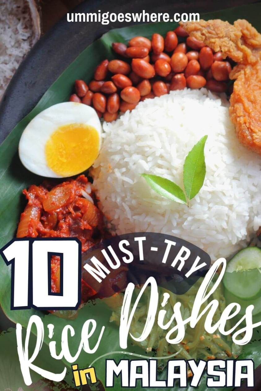 Rice Dishes to try in Malaysia