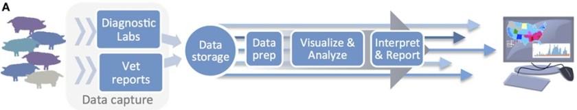 Data pipeline utilized by the Morrison Swine Health Monitoring Project.jpg
