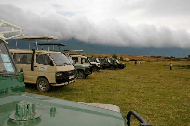 Cratera do Ngorongoro