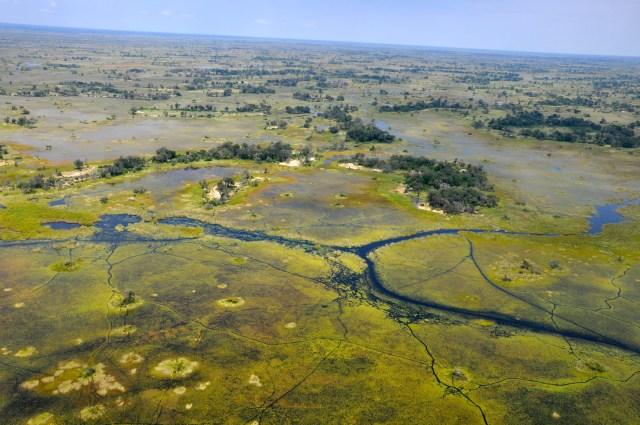 Delta do Okavango - água em abundância numa região árida