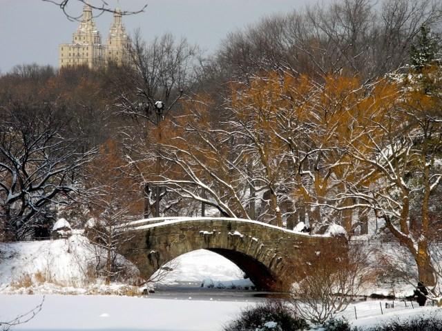 A neve no Central Park