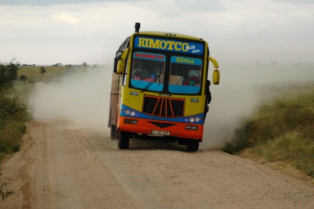 Estrada do Serengeti