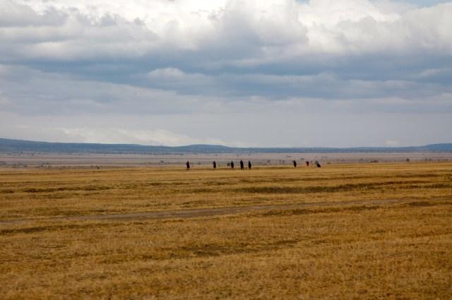 Os guerreiros Masai na imensidão da Planície do Serengeti.