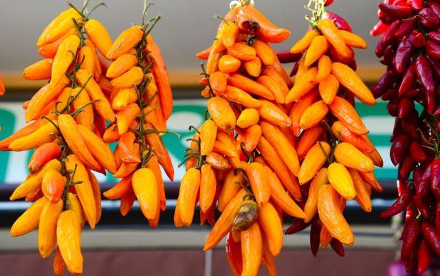 As pimentas são destaques na agricultura do sul da Itália.