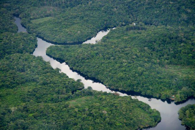 Os Igarapés são entradas dos rios na floresta.