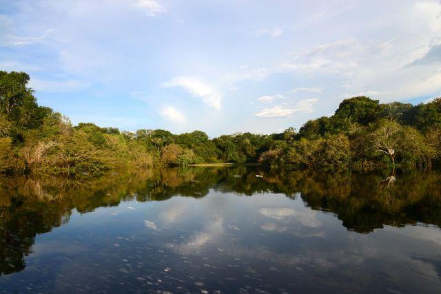 Os espelhos d'água na região das Anavilhanas.