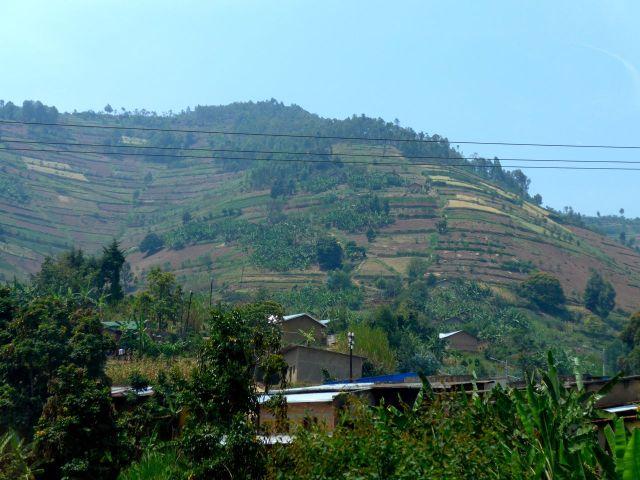 A agricultura intensiva familiar ocupa as encostas das montanhas.