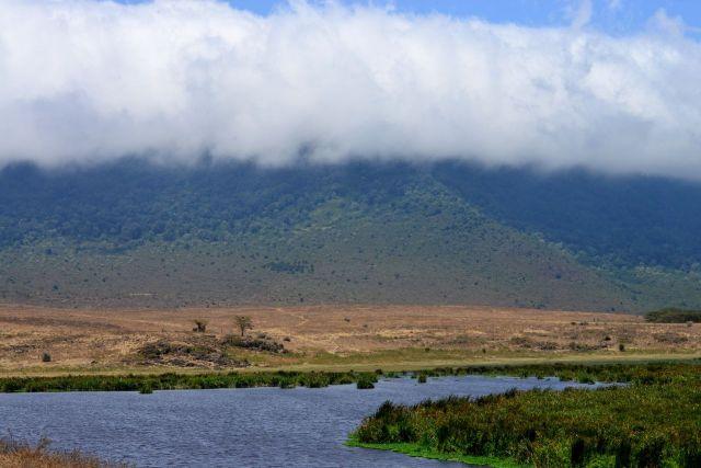 A borda da Cratera do Ngorongoro está sempre coberta por uma neblina intensa.