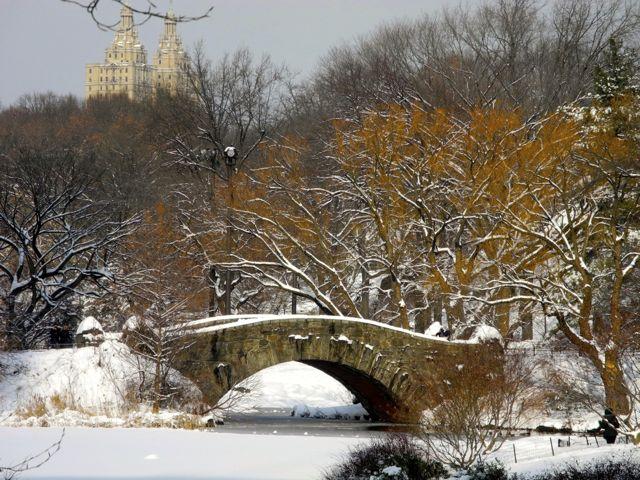 Paisagem do Central Park no inverno.