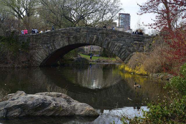 Detalhe do Central Park