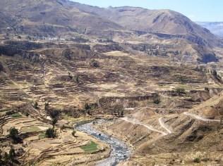 Canion del Colca - Peru