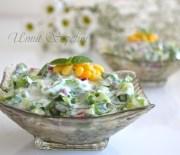 Yeşilli Serinlik Salatası ;)