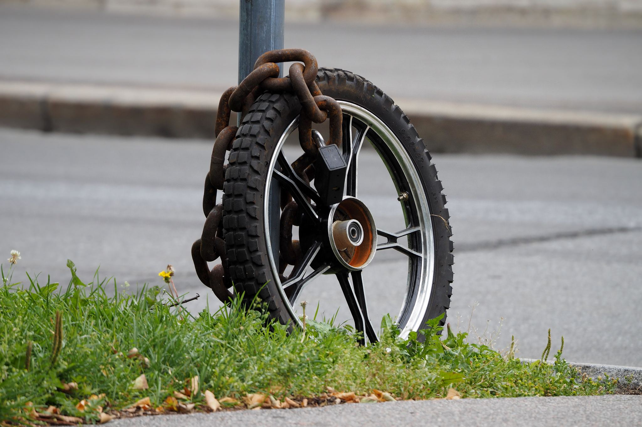 A picture of a single bicycle wheel chained up on a pole. Fail by Sergey Kochkarev on Flickr