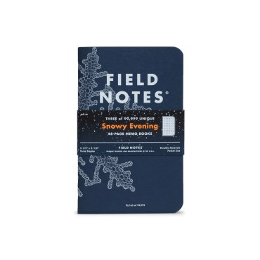 FIELD NOTES – SNOWY EVENING