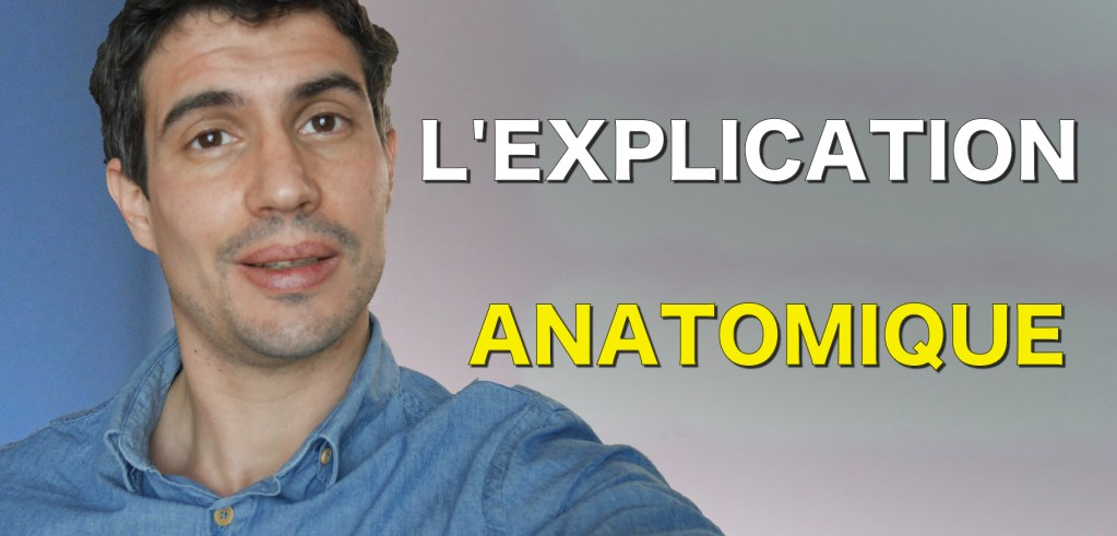L'explication anatomique