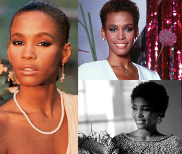 0102015_WhitneyHouston_TWA_ShortCurls_Slick_Brown_Red_Black_Hair
