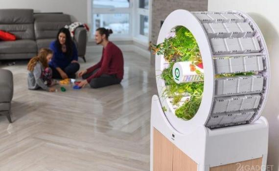 OGarden Smart – компактное устройство для выращивания различных культур прямо у вас в квартире. 7