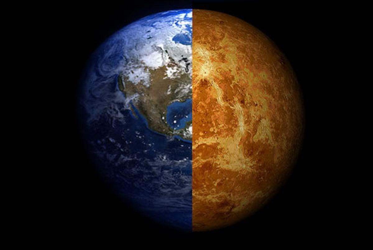 Есть ли жизнь на Венере? Российские ученые нашли на Венере «грибы», «скорпиона» и «ящерицу» 1