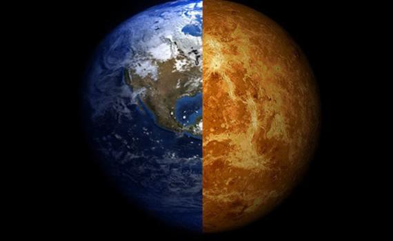 Есть ли жизнь на Венере? Российские ученые нашли на Венере «грибы», «скорпиона» и «ящерицу» 12