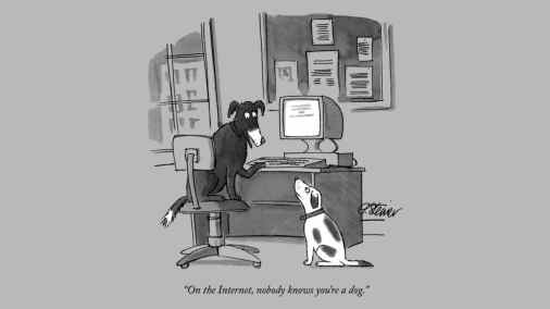 На пороге нового открытия: финские ученые создают интернет для собак 2